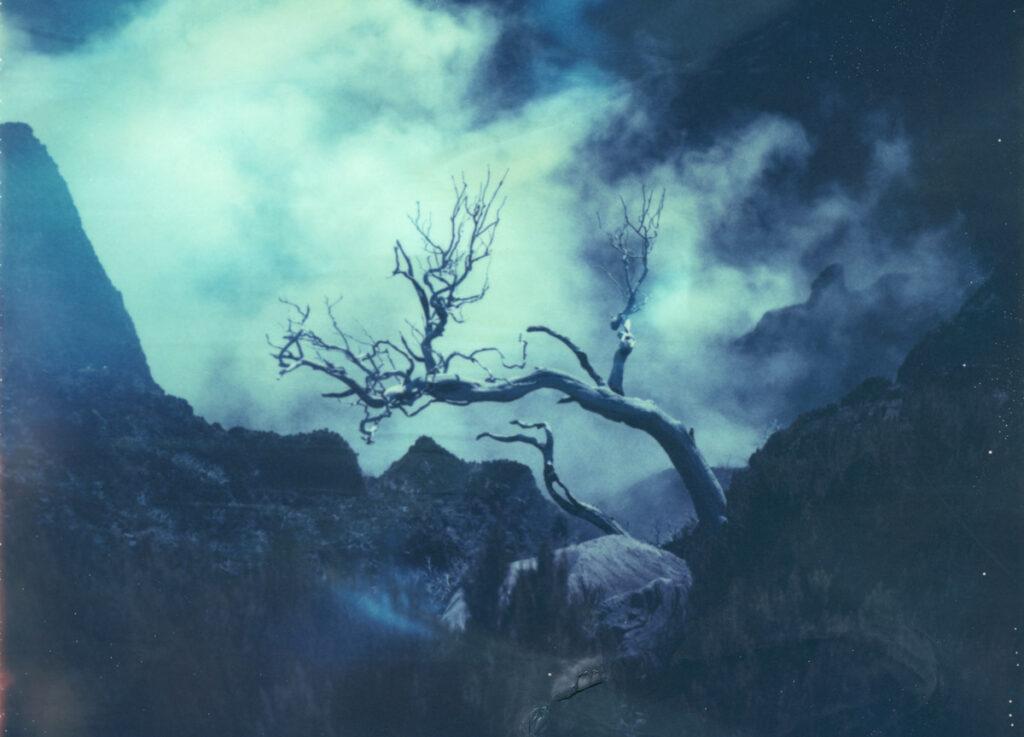 Polaroid Landschaften mit dem Polaroid 669 Film